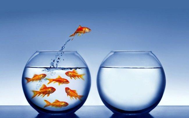 Cụ thể hóa mong muốn là 1 trong 13 nguyên tắc nghĩ giàu làm giàu