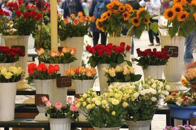 Mô hình kinh doanh hoa tươi làm giàu ở nông thôn