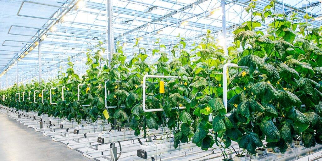 Kinh doanh thiết bị nông nghiệp - mô hình làm giàu không mới