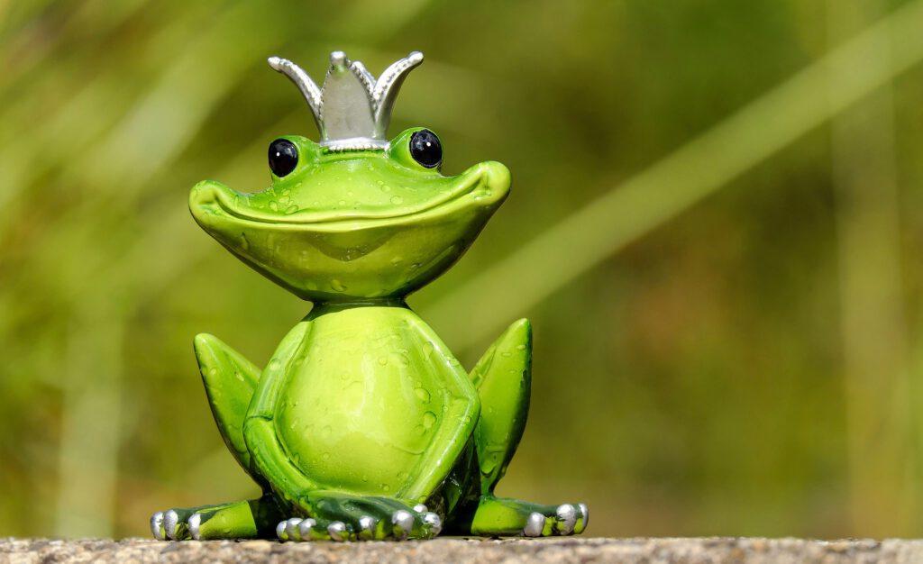 Mơ thấy ếch nhảy vào người