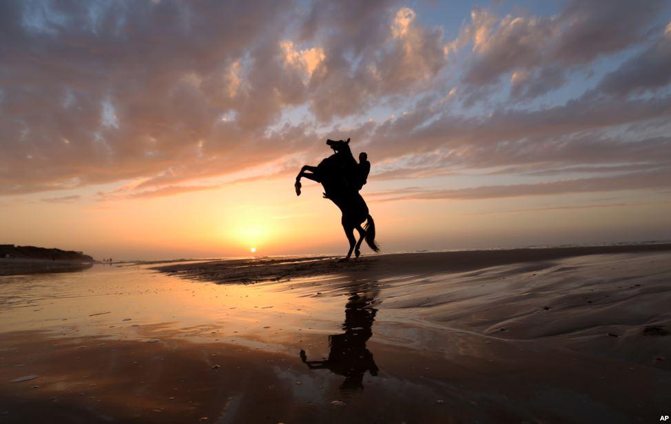 Nằm mơ thấy cưỡi ngựa