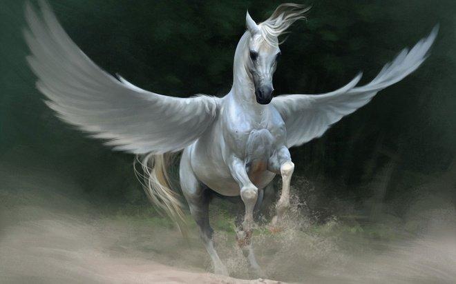 Mơ thấy ngựa trời